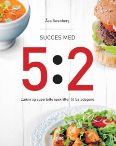 Succes_med_5_2_cover